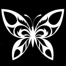 marquage papillon